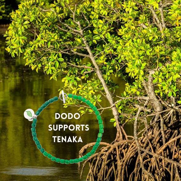 SPECIAL PROJECT: Dodo supports Tenaka